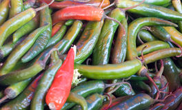 Peperoni del Cile fotografia stock