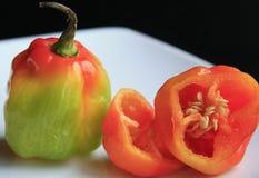 Peperoni del Habanero Fotografia Stock