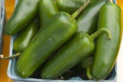Peperoni del jalapeno Fotografia Stock