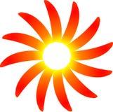 Peperoni del sole del peperoncino rosso caldo Immagine Stock