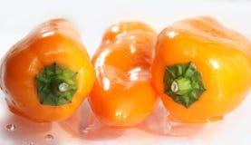Peperoni della paprica Immagini Stock