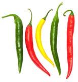 Peperoni di peperoncini rossi caldi Immagini Stock Libere da Diritti