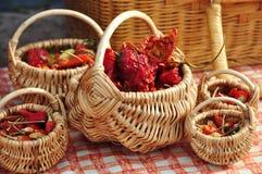 Peperoni di peperoncini rossi rossi secchi Fotografia Stock