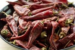Peperoni di peperoncini rossi rossi secchi caldi fotografia stock libera da diritti