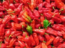 Peperoni di peperoncino rosso Immagini Stock Libere da Diritti