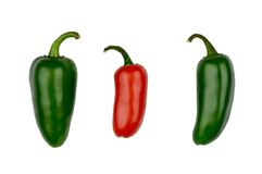 Peperoni di peperoncino rosso caldo Fotografie Stock