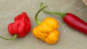 Peperoni di peperoncino rosso caldo Immagine Stock