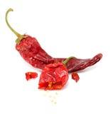 Peperoni di peperoncino rosso caldo secchi Immagine Stock Libera da Diritti