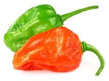 Peperoni di peperoncino rosso di Bhut Jolokia Fotografia Stock