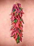 Peperoni di peperoncino rosso messicani caldi Immagini Stock