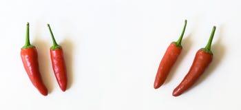 Peperoni di peperoncino rosso nel Unquote di virgoletta Fotografia Stock Libera da Diritti