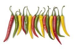 Peperoni di peperoncino rosso rossi, gialli e verdi in una riga Immagini Stock