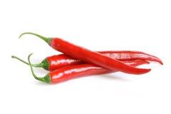 Peperoni di peperoncino rosso rosso Fotografia Stock Libera da Diritti