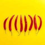 Peperoni di peperoncino rosso rosso Immagine Stock Libera da Diritti