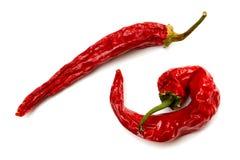 Peperoni di peperoncino rosso rosso secchi Fotografia Stock Libera da Diritti