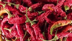 Peperoni di peperoncino rosso roventi stock footage
