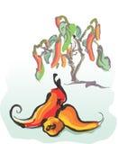 Peperoni di peperoncino rosso roventi illustrazione vettoriale