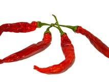 Peperoni di peperoncino rosso roventi Fotografie Stock