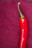 Peperoni di peperoncino rosso roventi Fotografia Stock Libera da Diritti