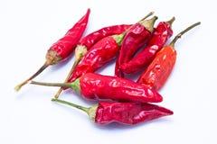 Peperoni di peperoncino rosso roventi dall'Ungheria Fotografia Stock