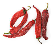 Peperoni di peperoncino rosso roventi secchi Fotografie Stock Libere da Diritti