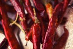 Peperoni di peperoncino rosso roventi su priorità bassa bianca Immagini Stock