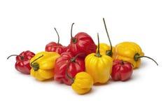 Peperoni di peperoncino rosso scozzesi gialli e rossi del cofano Immagini Stock Libere da Diritti
