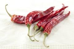 Peperoni di peperoncino rosso secchi Fotografie Stock Libere da Diritti
