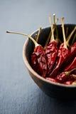 Peperoni di peperoncino rosso secchi Fotografie Stock