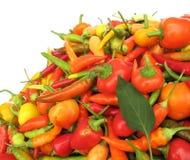 Peperoni di peperoncino rosso variopinti Fotografie Stock