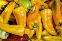 Peperoni di verdure ad un mercato degli agricoltori Fotografie Stock