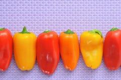 Peperoni dolci del morso dei colori differenti Fotografia Stock