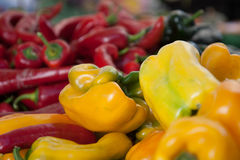 Peperoni dolci nei colori multipli Immagini Stock