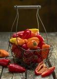 Peperoni dolci organici selezionati freschi Fotografie Stock Libere da Diritti