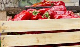 Peperoni dolci rossi che griling Fotografia Stock Libera da Diritti