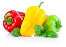 Peperoni dolci rossi, gialli e verdi con le foglie isolate Fotografia Stock Libera da Diritti