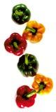 Peperoni dolci su fondo Immagine Stock