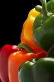 Peperoni dolci sul nero Fotografia Stock