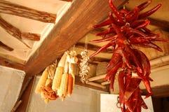 Peperoni e cereale Fotografia Stock