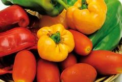 Peperoni e pomodori Fotografie Stock