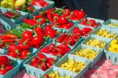 Peperoni e verdure al greenmarket degli agricoltori di Union Square Fotografie Stock Libere da Diritti