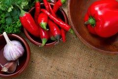 Peperoni ed aglio di peperoncino rosso caldo in ciotole sopra tela di canapa Immagini Stock