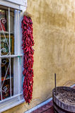 Peperoni & finestra nel nanometro Fotografia Stock