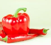 Peperoni freschi Immagini Stock