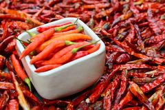 Peperoni freschi in ciotola bianca e peperoni secchi di qualità inferiore Immagini Stock Libere da Diritti