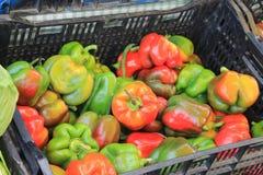 Peperoni freschi da vendere in un mercato di nord-ovest degli agricoltori di Pacifico Fotografia Stock Libera da Diritti