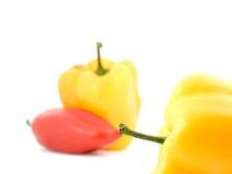 Peperoni freschi di verdure fotografia stock