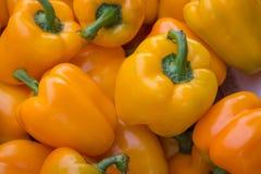 Peperoni gialli Immagine Stock