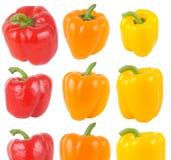Peperoni isolati su bianco Fotografie Stock