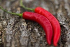 Peperoni piccanti rossi organici su fondo di legno Immagini Stock